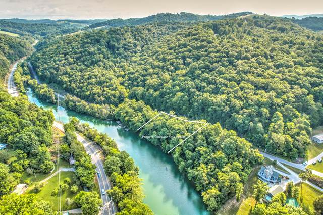 Cape Norris, New Tazewell, TN 37825 (#1154354) :: JET Real Estate