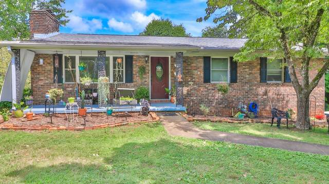3408 Maryville Pike, Knoxville, TN 37920 (#1158075) :: Shannon Foster Boline Group