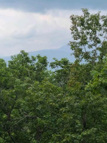 1808 Spring Hill Drive, Sevierville, TN 37876 (#1162832) :: The Terrell-Drager Team