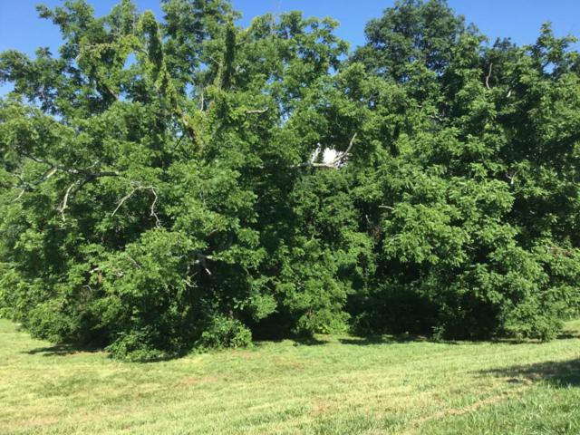 Lot 98 Barnsley Rd, Knoxville, TN 37934 (#647086) :: Shannon Foster Boline Group