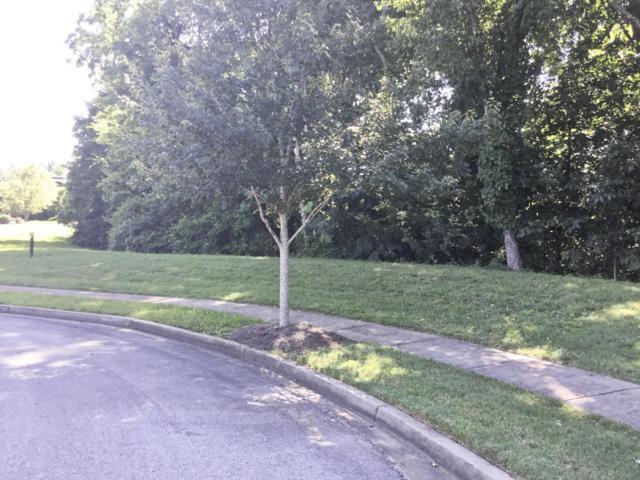 Lot101 Hammock Lane, Knoxville, TN 37934 (#647087) :: CENTURY 21 Legacy