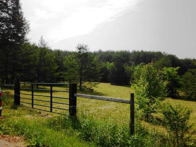 Curtis Rd 1948-L, Tellico Plains, TN 37385 (#780446) :: The Creel Group | Keller Williams Realty