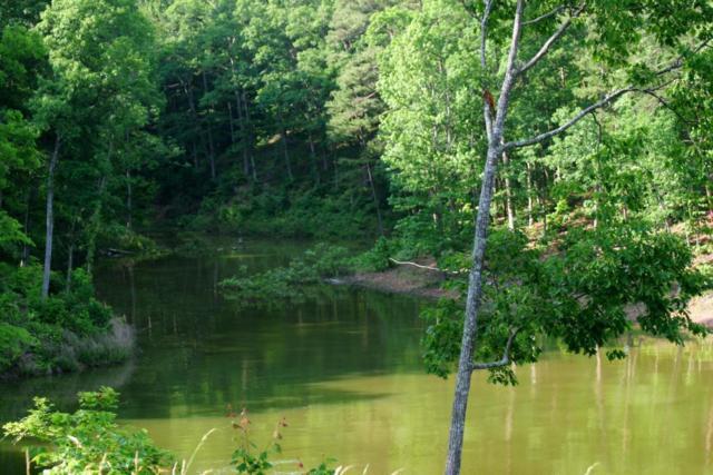 River View Drive, Dandridge, TN 37725 (#879266) :: Billy Houston Group