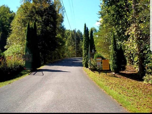 Bluestone Way, Townsend, TN 37882 (#925479) :: Venture Real Estate Services, Inc.