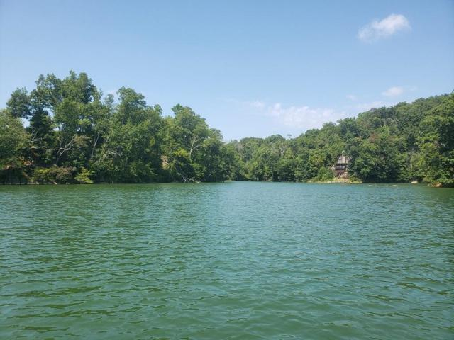 Lot 206 Harbor Point, Mooresburg, TN 37811 (#936122) :: The Sands Group
