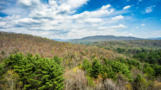 Green Ridge Trail - Lot #2, Harriman, TN 37748 (#941826) :: Adam Wilson Realty