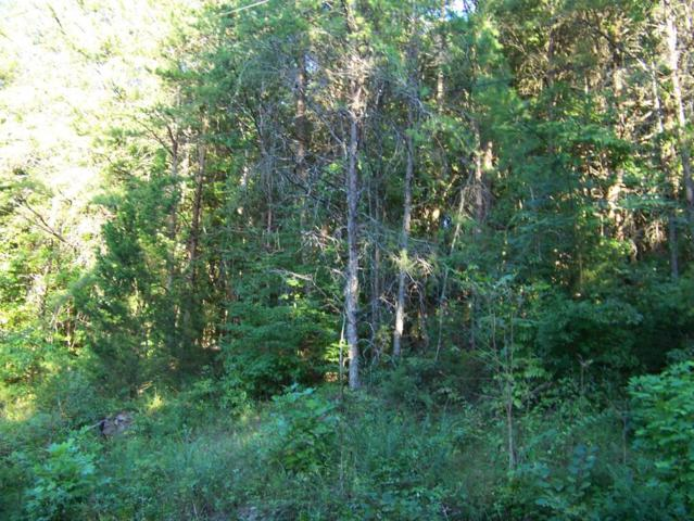 172 Bat Creek Shores Lane, Vonore, TN 37885 (#974647) :: Billy Houston Group
