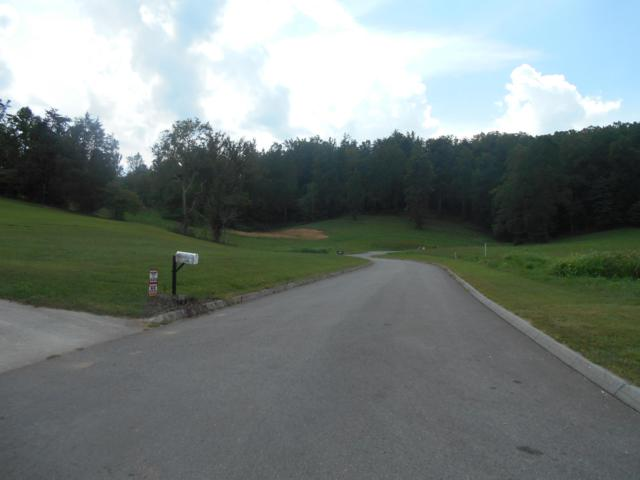 Briar Ridge Lane, Strawberry Plains, TN 37871 (#988469) :: Billy Houston Group