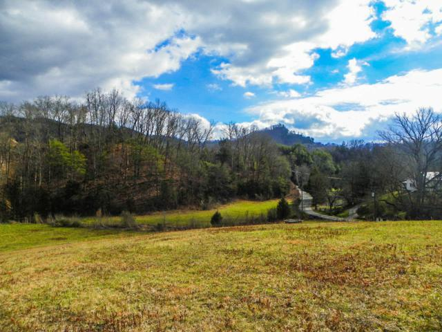 Tract 1 Mccarter Hollow Rd, Sevierville, TN 37862 (#991355) :: Billy Houston Group