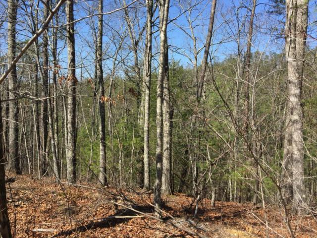 245 Mountain Retreat Rd, Townsend, TN 37882 (#992396) :: Billy Houston Group