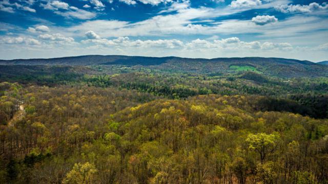Green Ridge Trail - Lot #19, Harriman, TN 37748 (#999335) :: Venture Real Estate Services, Inc.