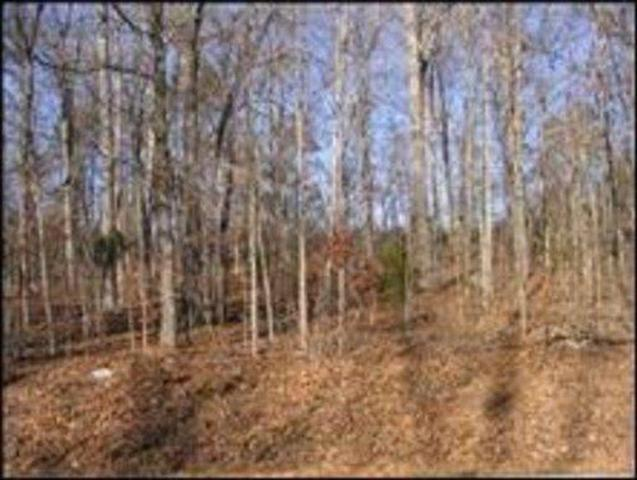 Holiday Drive, Tallassee, TN 37878 (#1019738) :: Billy Houston Group