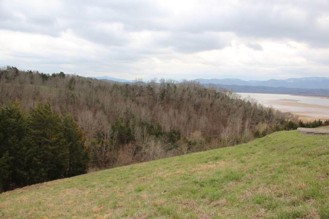 Lot 70 Ivy Way, Newport, TN 37821 (#1031601) :: Billy Houston Group