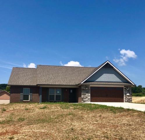 115 Montgomery Farms Drive, Friendsville, TN 37737 (#1039589) :: Billy Houston Group