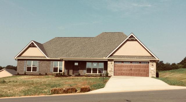 123 Montgomery Farms Drive, Friendsville, TN 37737 (#1041893) :: Billy Houston Group
