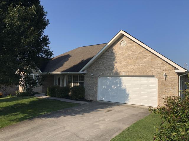 3504 Brandon Lee Drive, Maryville, TN 37804 (#1047428) :: Billy Houston Group