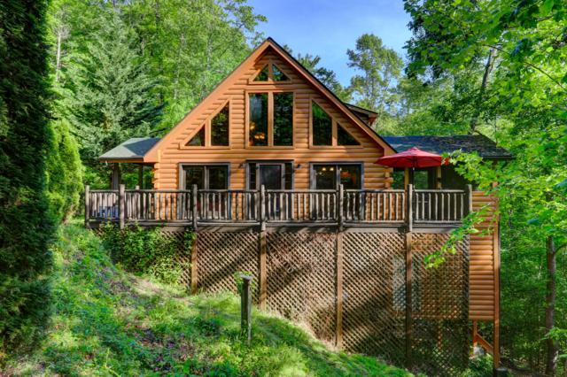 139 Cove Point Lane, Sharps Chapel, TN 37866 (#1076737) :: CENTURY 21 Legacy