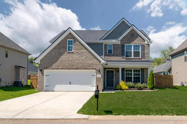 12323 Turkey Crossing Lane, Knoxville, TN 37932 (#1076819) :: Catrina Foster Group