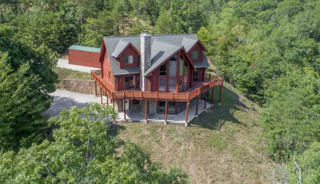 630 Bluff View Rd, New Tazewell, TN 37825 (#1100028) :: Realty Executives