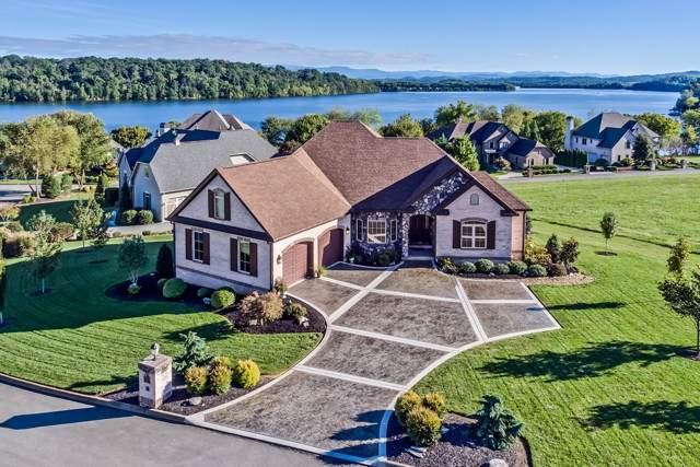110 Lace Wing Drive, Vonore, TN 37885 (#1102566) :: Catrina Foster Group