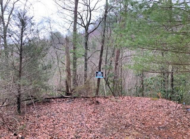 Laurel Ct 36, 37 &Alpine Dr 38, Sevierville, TN 37876 (#1144026) :: Tennessee Elite Realty