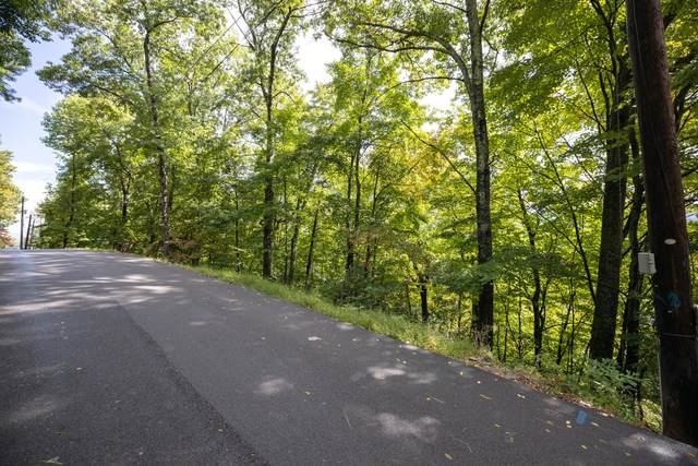 Luzerne Drive, Gatlinburg, TN 37738 (#1169189) :: Cindy Kraus Group   Engel & Völkers Knoxville