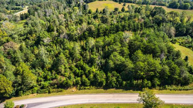 Lot 3 Serenity Drive, Harriman, TN 37748 (#992862) :: Adam Wilson Realty