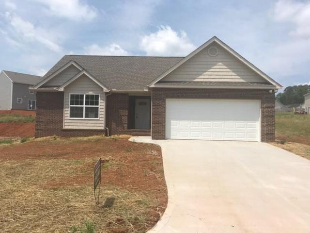 1813 River Poppy Drive, mascot, TN 37806 (#1030019) :: Shannon Foster Boline Group