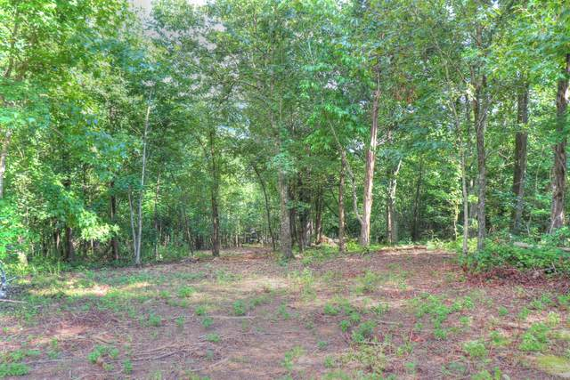 Lot 113 E Shore Drive, Rockwood, TN 37854 (#1094204) :: A+ Team