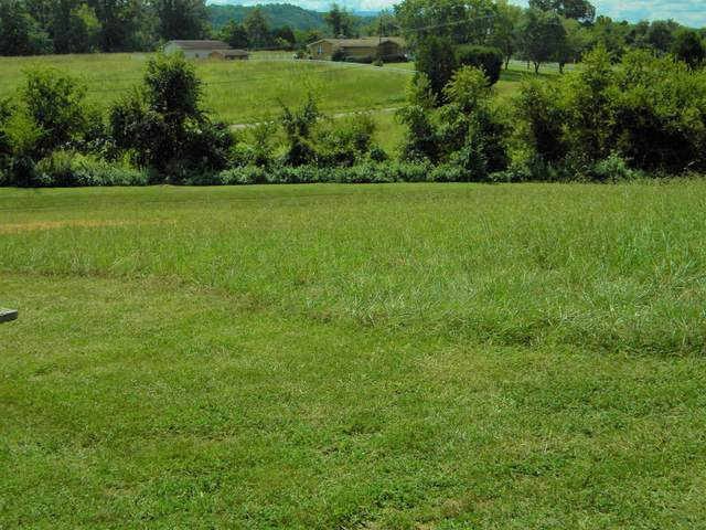 Rippling Waters #46 Circle, Sevierville, TN 37876 (#1101598) :: Realty Executives Associates