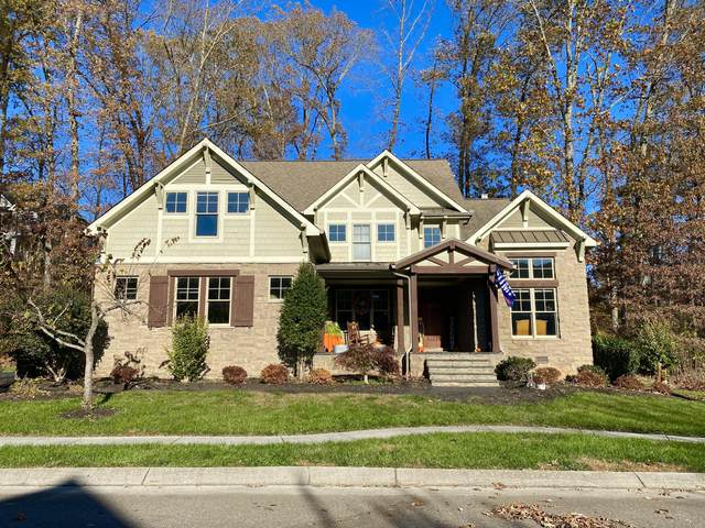 2532 Shady Meadow Lane, Knoxville, TN 37932 (#1112501) :: Billy Houston Group