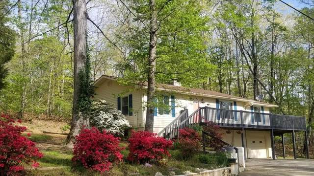 539 Apollo Drive, Spring City, TN 37381 (#1138590) :: Adam Wilson Realty