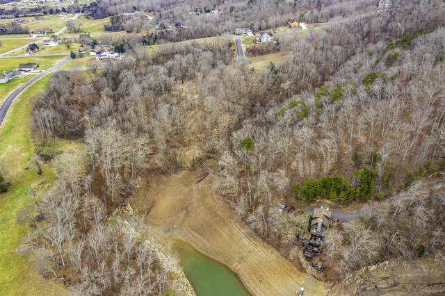 Lot 205 Harbor Point, Mooresburg, TN 37811 (#936111) :: The Cook Team