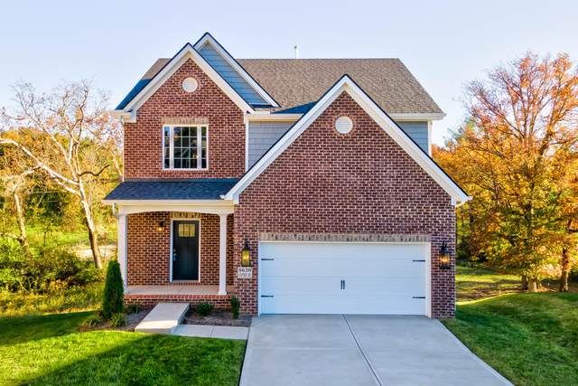 8630 Oxford Drive, Knoxville, TN 37922 (#1081220) :: Billy Houston Group