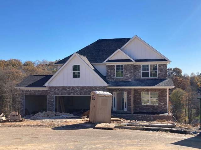 1300 Sloping Hill Lane, Knoxville, TN 37931 (#1117328) :: Billy Houston Group