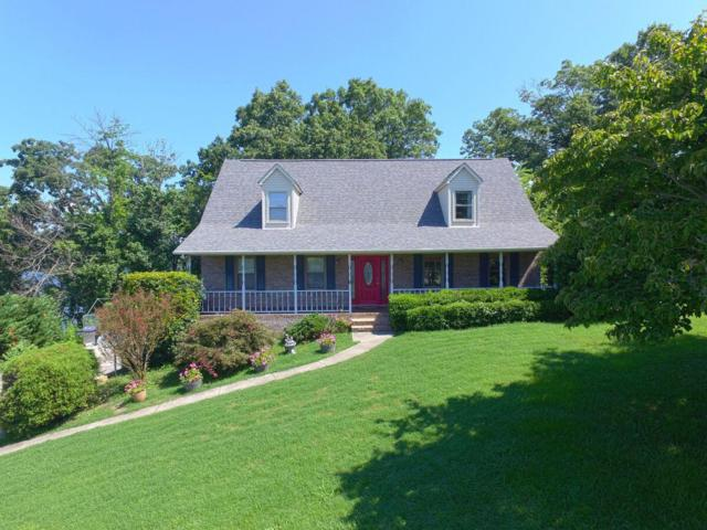 4149 Carnation Drive, Morristown, TN 37814 (#1033634) :: Billy Houston Group