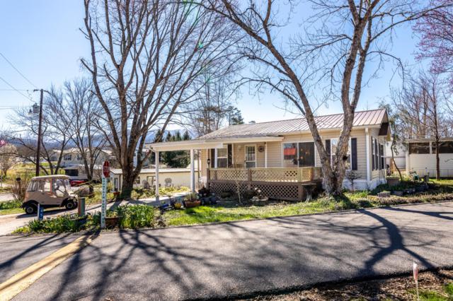 450 Mountain Thrush Drive, Townsend, TN 37882 (#1072279) :: Venture Real Estate Services, Inc.