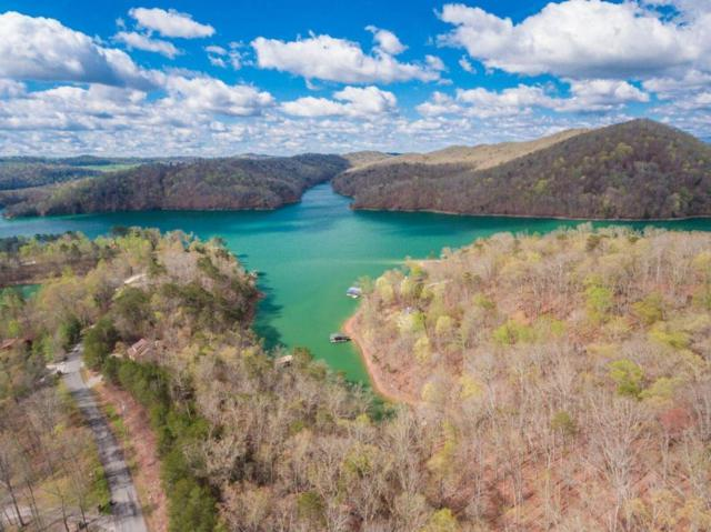 Lakeview Drive, Sharps Chapel, TN 37866 (#1048699) :: Billy Houston Group