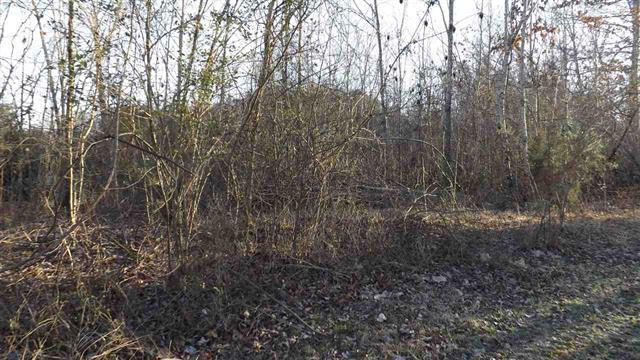 Lot #2 Tennessee St, Spring City, TN 37381 (#1002720) :: Billy Houston Group