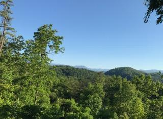 Lot#1 Ac Red Bone Way, Sevierville, TN 37876 (#1003269) :: Billy Houston Group
