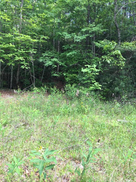 Lot 1 Swann Saddle Road, Sevierville, TN 37876 (#1005043) :: Shannon Foster Boline Group
