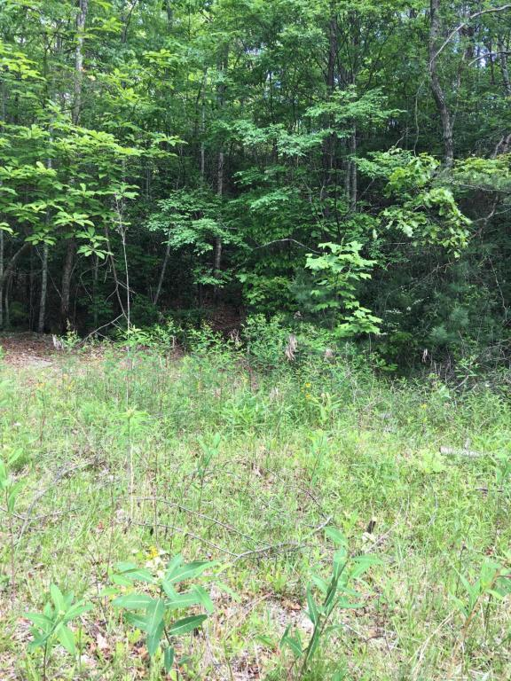 Lot 2 Swann Saddle Road, Sevierville, TN 37876 (#1005046) :: Shannon Foster Boline Group