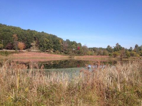Lot 5 NW Frontage Rd, Cleveland, TN 37312 (#1008902) :: Venture Real Estate Services, Inc.