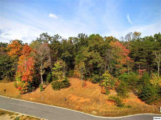 Lot 66 Sierra Lane Way, Sevierville, TN 37876 (#1010992) :: The Terrell Team