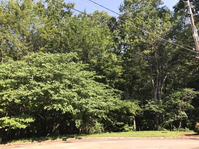 2011 Marshy Swamp Point, Knoxville, TN 37932 (#1011033) :: Billy Houston Group
