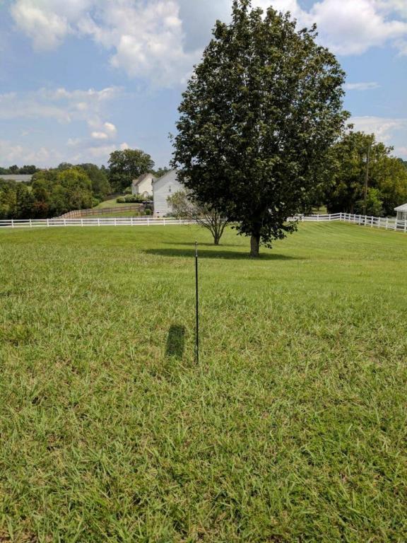 Front Runner Lane, Seymour, TN 37865 (#1011235) :: Shannon Foster Boline Group