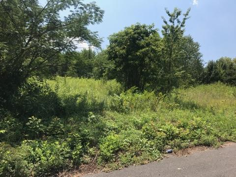 Plena Lane, Kodak, TN 37764 (#1011999) :: SMOKY's Real Estate LLC