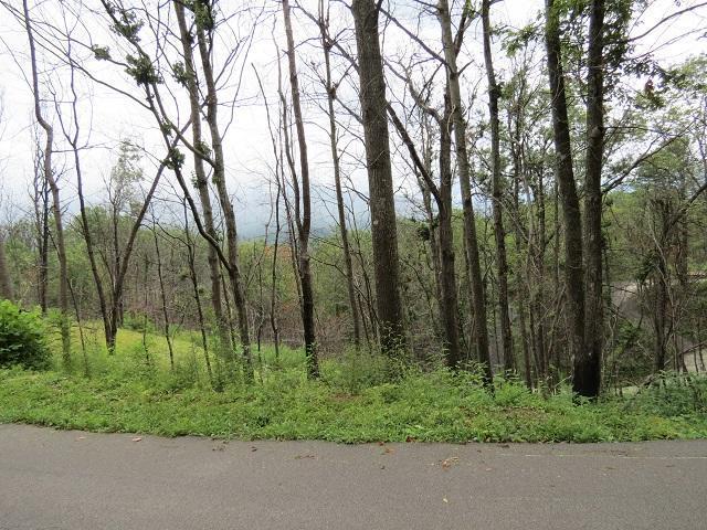 Lot 58 Deer Path Lane, Gatlinburg, TN 37738 (#1013389) :: SMOKY's Real Estate LLC