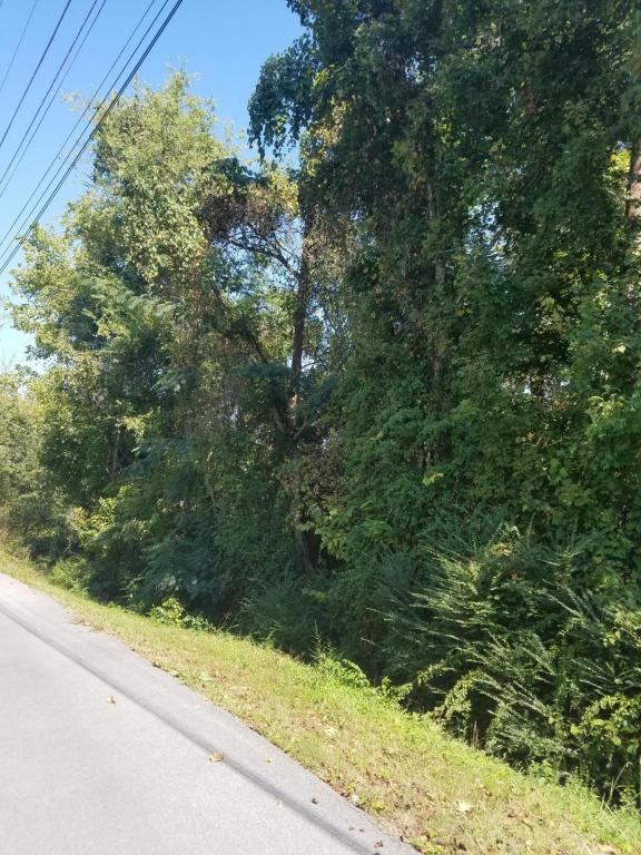 Lot 25 Scenic Loop Rd, Pigeon Forge, TN 37863 (#1017261) :: Billy Houston Group