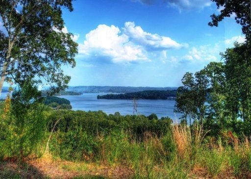 521 Eagle Point Drive, Rockwood, TN 37854 (#1017594) :: Billy Houston Group